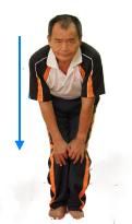 膝蓋-1.png
