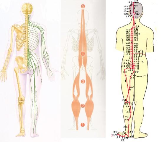 神經按摩3圖