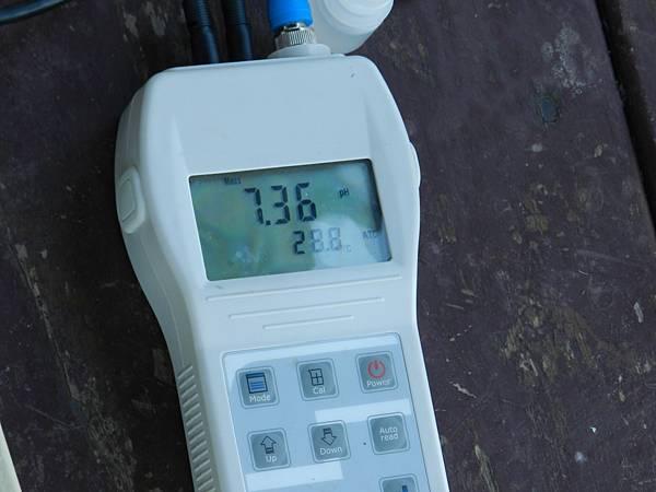 DSCN8131.JPG