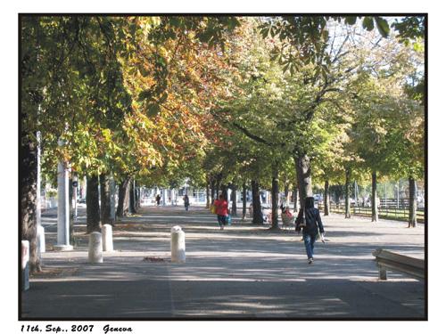 11-09-2007-012.jpg