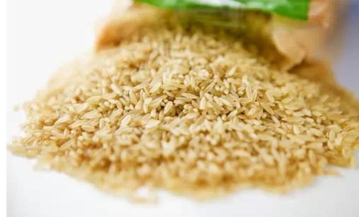 4、最助消化的是糙米.png