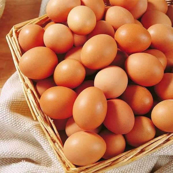 雞蛋是人類最好的營養來源之一!.jpeg