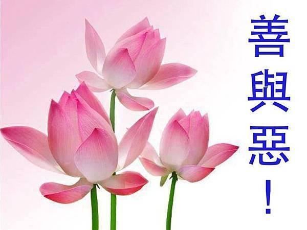圖文聖訓 (19).jpg