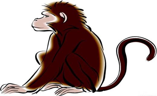 生肖猴.jpg