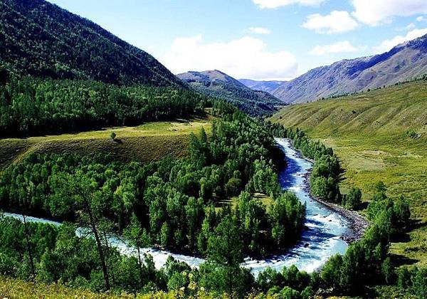 新疆伊犁滿山谷的杏花-30-.jpg