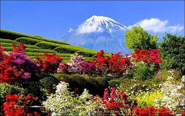 ~日本美景~2.jpg