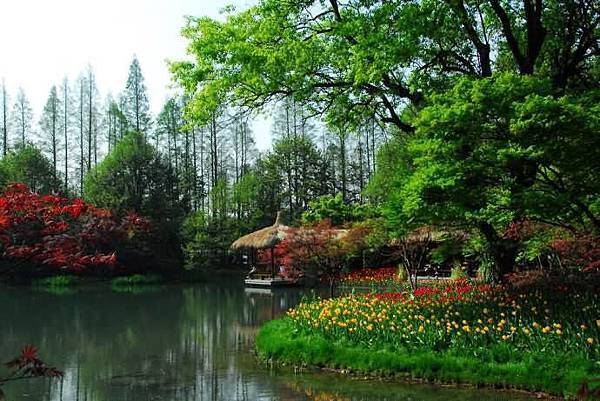 春意西湖-2-.jpg