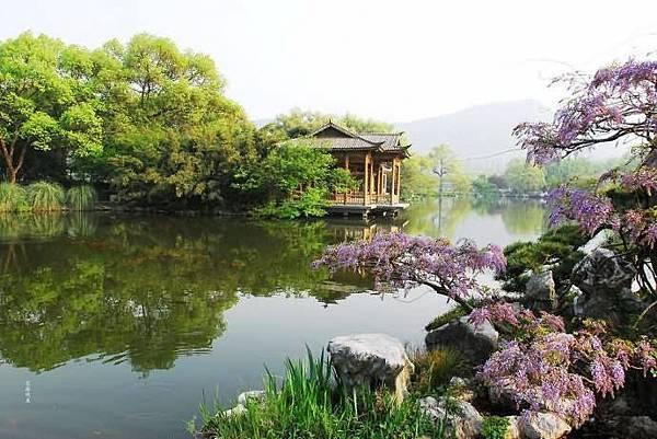春意西湖-7-.jpg