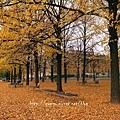 柏林的秋天01