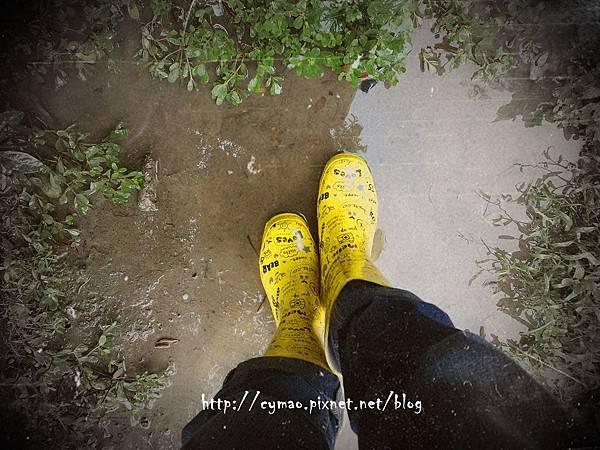下雨天,有雨鞋,真好!