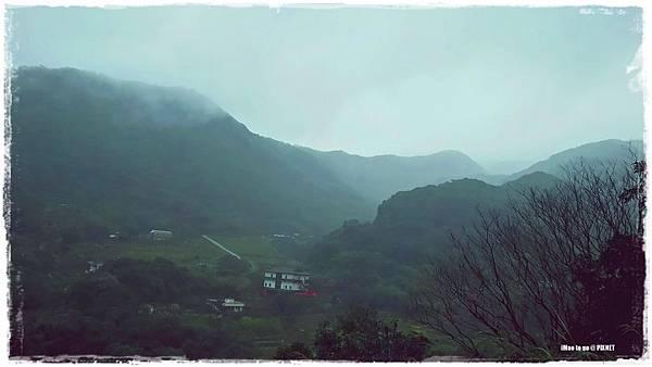 櫻木花道 02.JPG