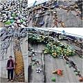 2016.03.13-14 郵輪列車阿里山櫻花季 板陶窯交趾剪黏工藝園區 05.1.JPG