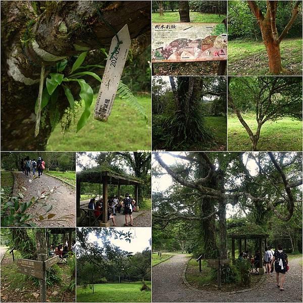 2015.10.05 宜蘭福山植物園一日遊 15.JPG