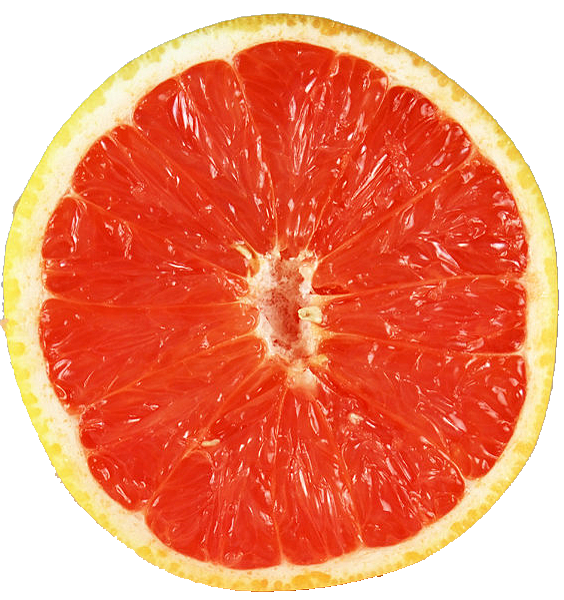 Grapefruit-6_01.png