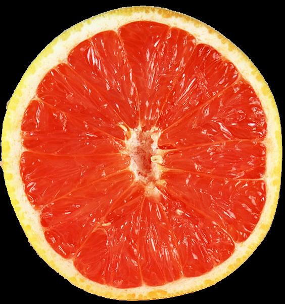 Grapefruit-6_01.png