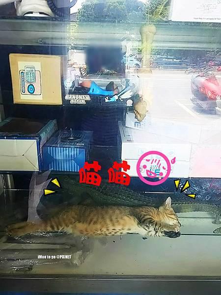 2017.08.20 台中市 翁記泡沫廣場 04.2.JPG