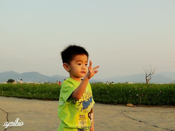 照片 011.1.jpg
