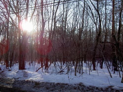 第四天的清晨, 一個人起一個大早先去探險,