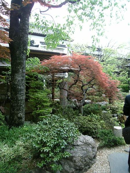 餐廳內的日式庭院造景
