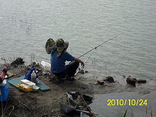 吳郭魚 、休閒池