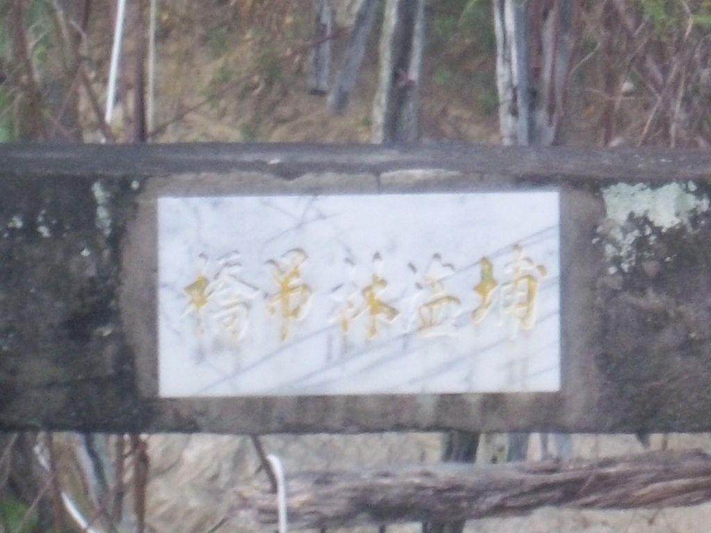 埔塩林吊橋(太平)