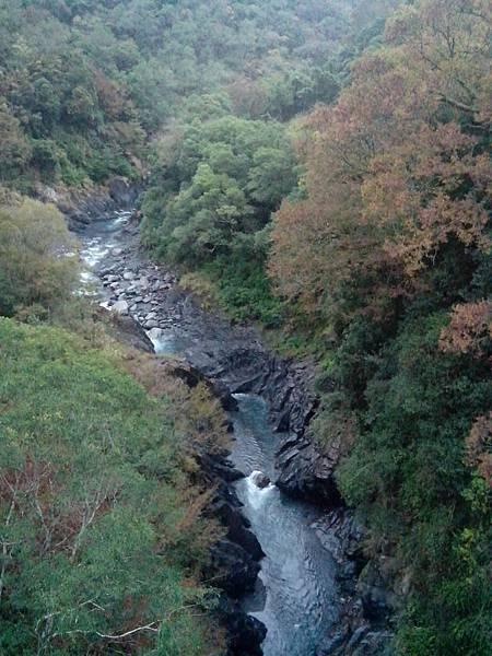 平生吊橋下方濁水溪