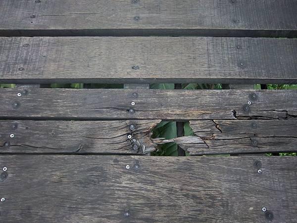 義仁吊橋 多處毀損