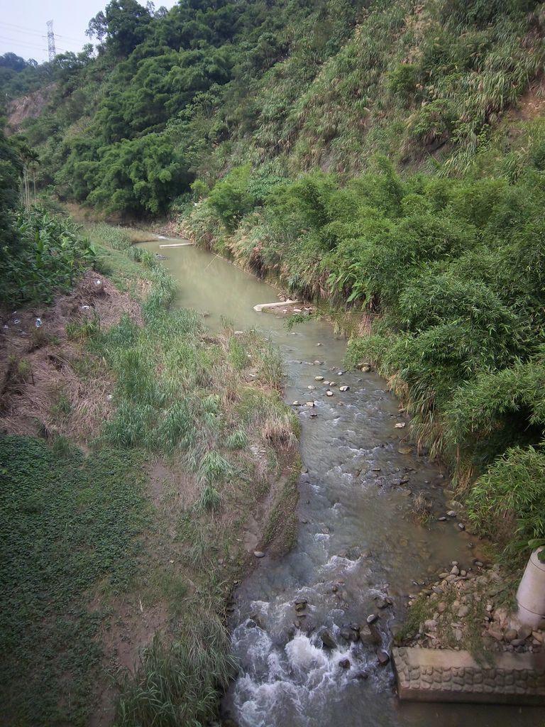 平林溪支流