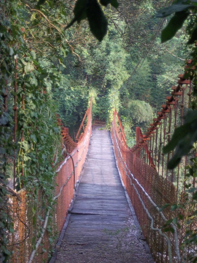 裡冷吊橋(和平)