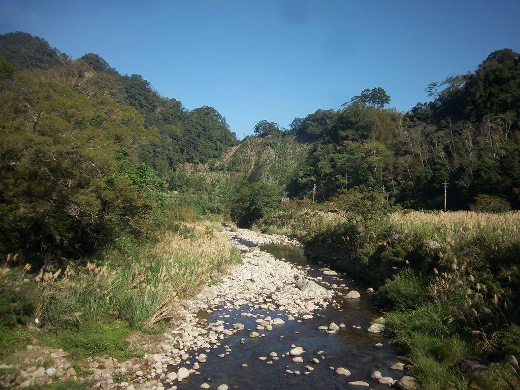 和平吊橋 橋下清澈溪流