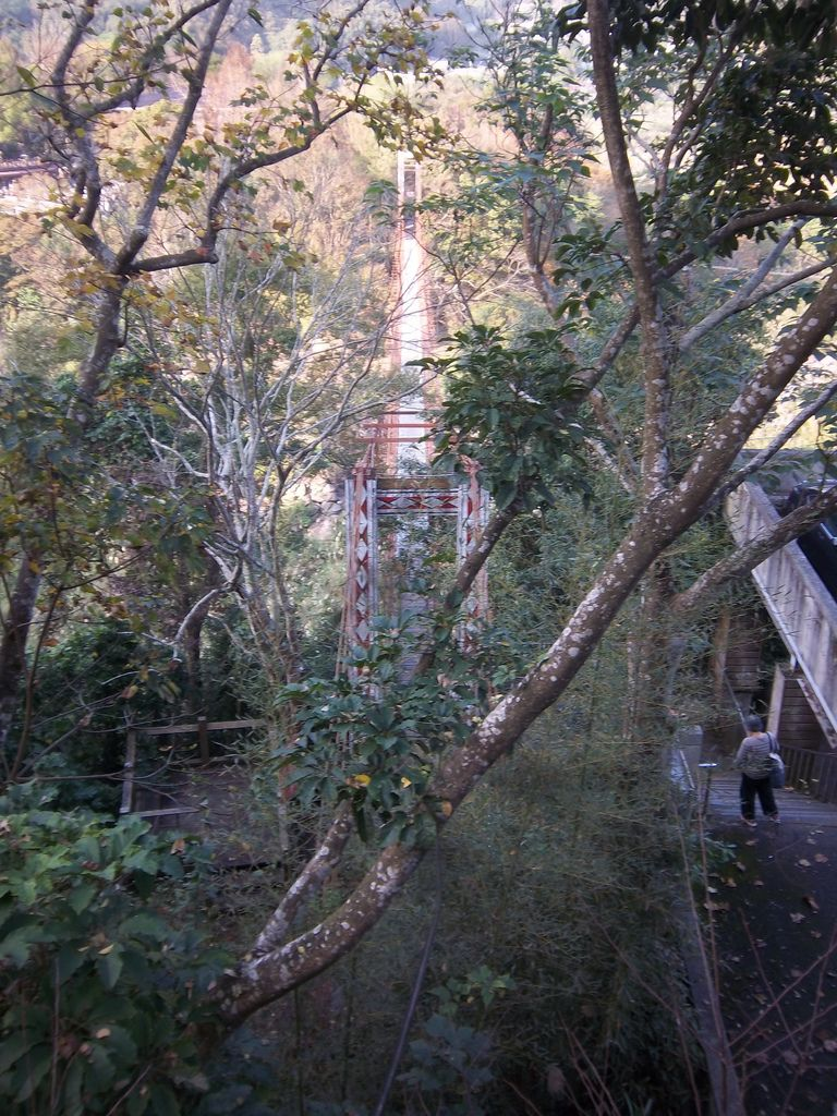 虎山吊橋(泰安)