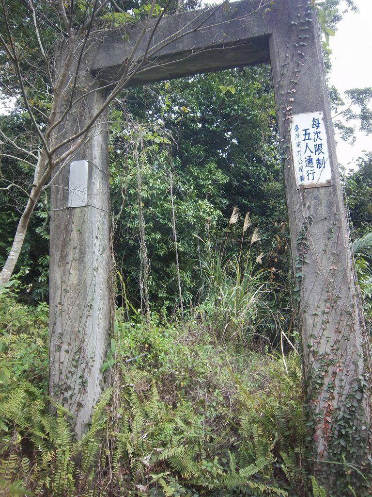 無名台電吊橋(三義)