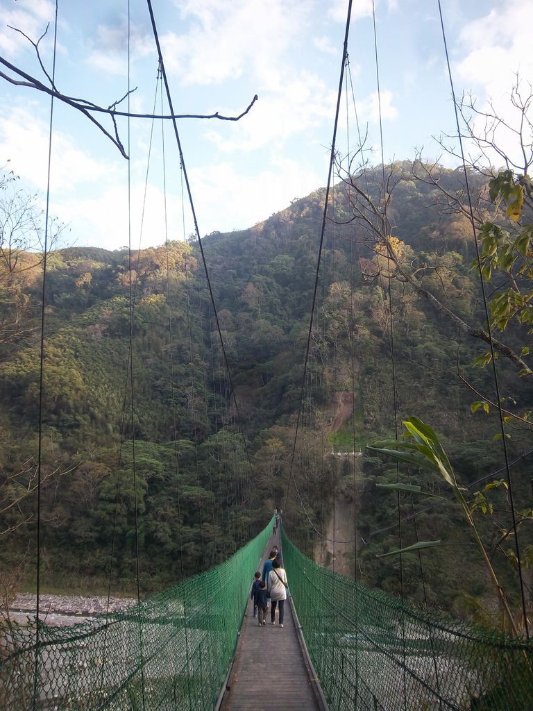 象鼻吊橋(泰安)