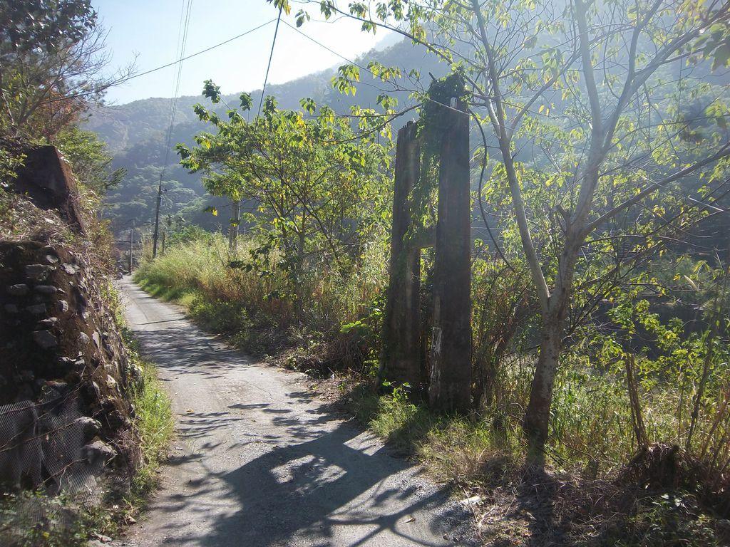 鳥踏坑吊橋(埔里)
