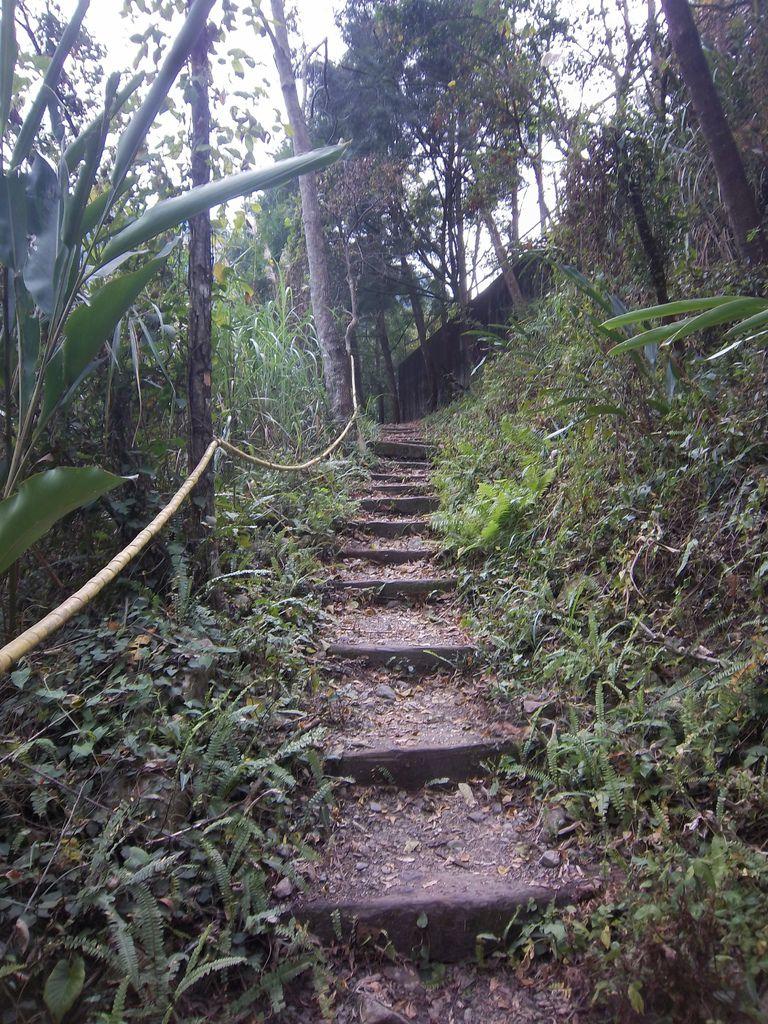 不斷上爬的階梯