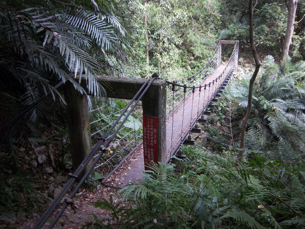 德芙蘭步道吊橋之2
