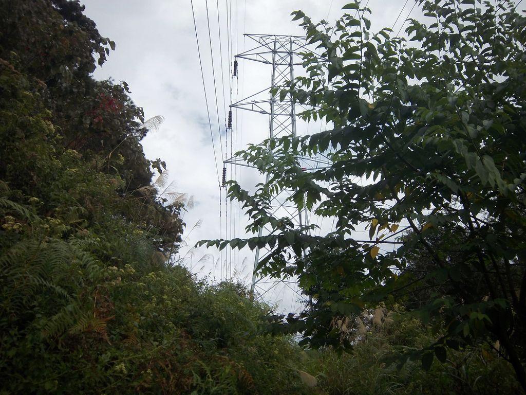 沿路上的首座電塔