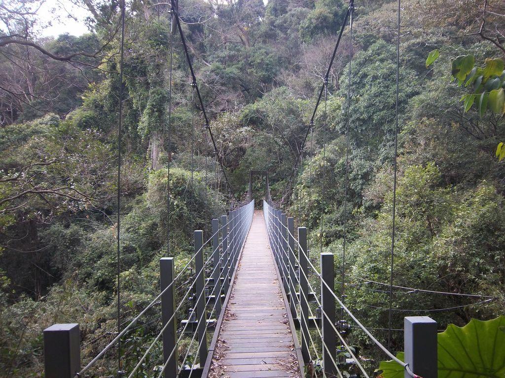德芙蘭步道吊橋之3