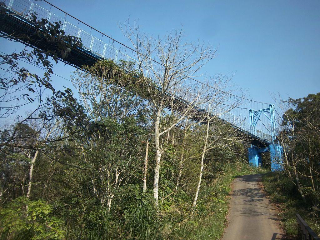 古意吊橋(銅鑼)