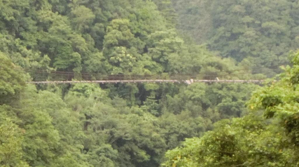 泰平/大平吊橋(尖石-復興)