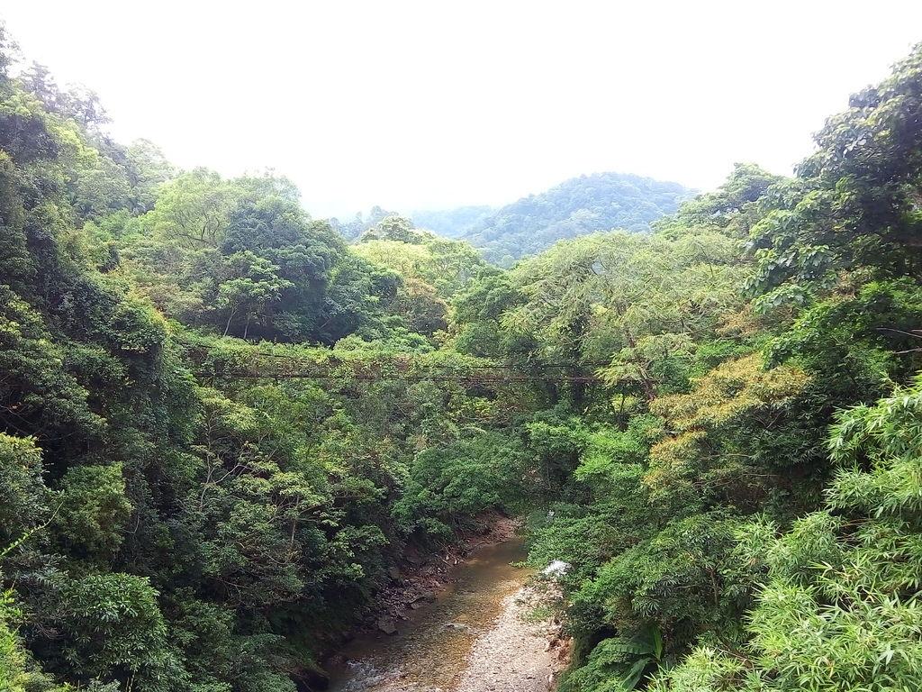 玉山吊橋(關西)