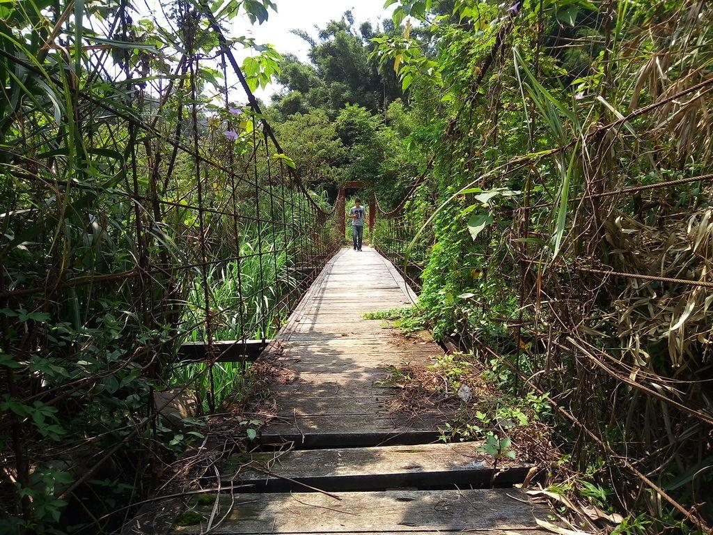 拱子溝吊橋(關西)
