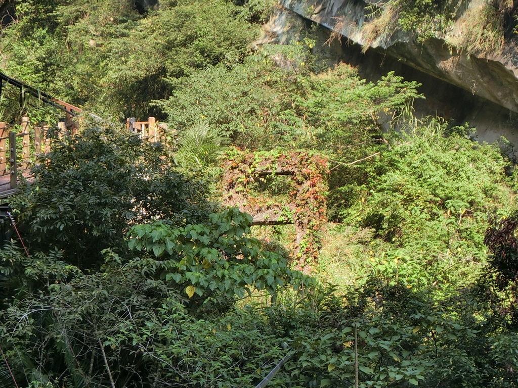 原 自強吊橋 遺跡