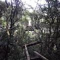 潭上吊橋(萬豐村)