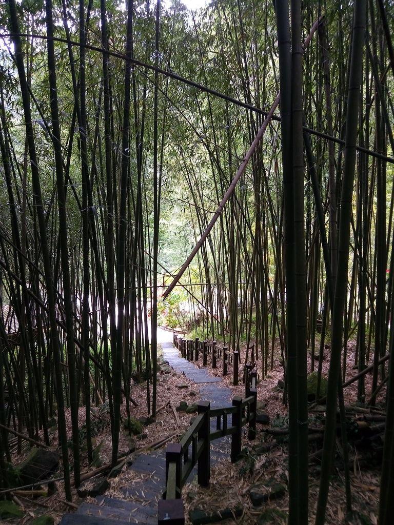 石盤谷步道
