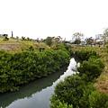 橋下濕地人工河