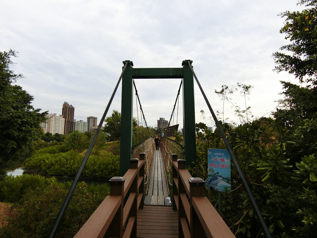 中都濕地吊橋2