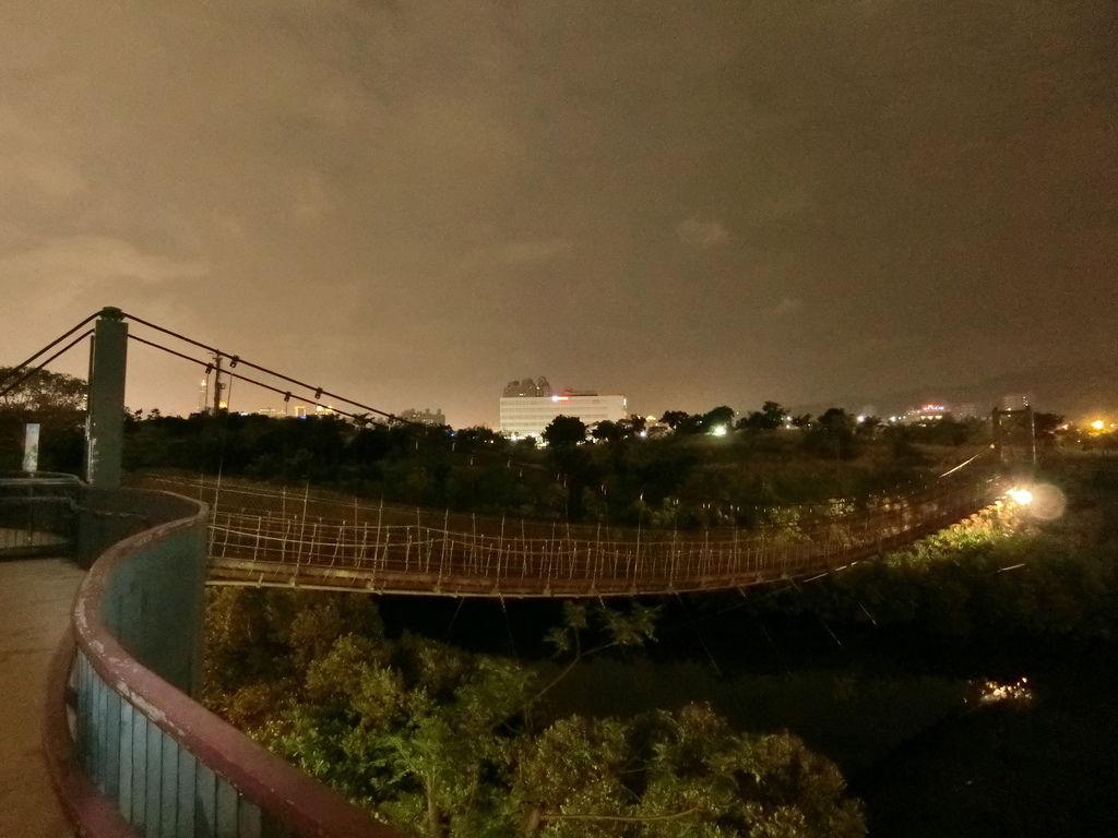 中都濕地吊橋1