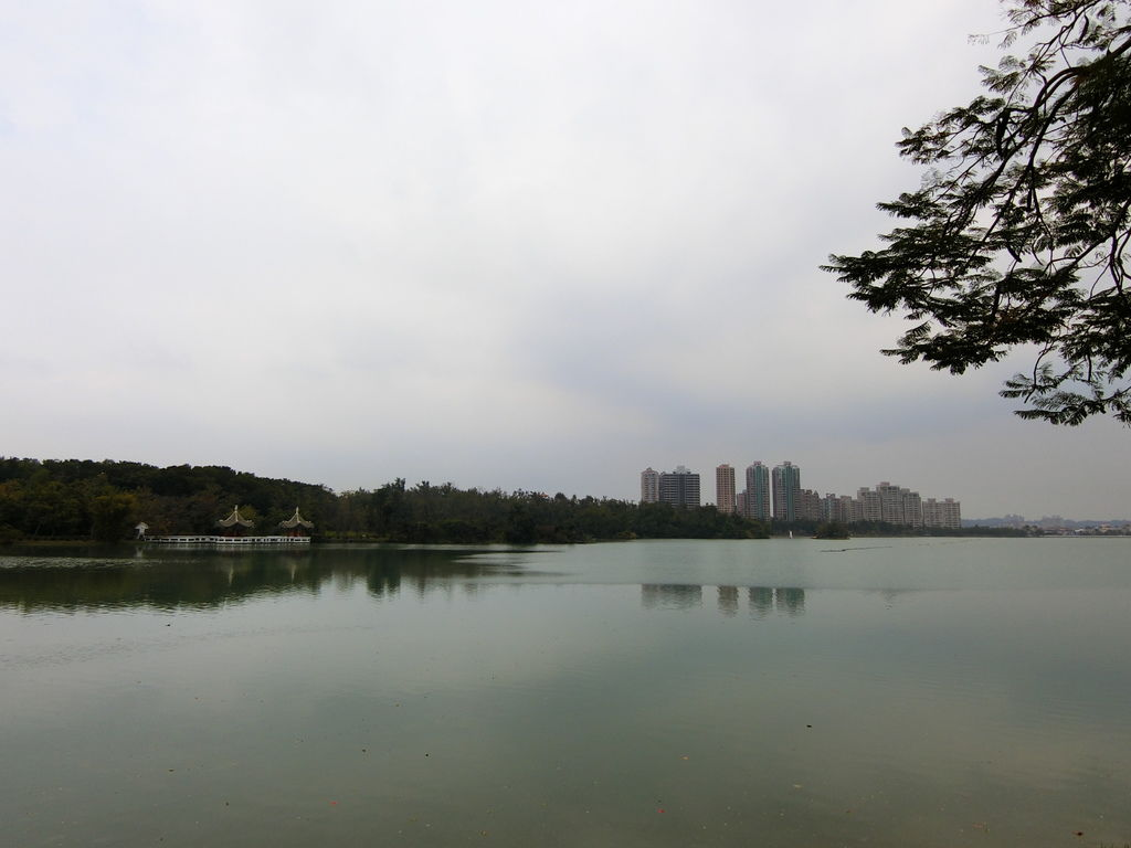 澄清湖一景