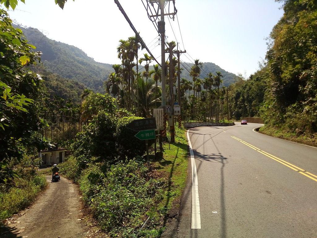台3線 富山段 岔路口